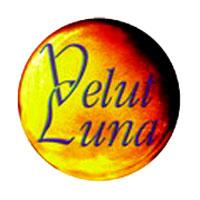 Velut Luna