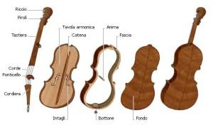 Parti del violino